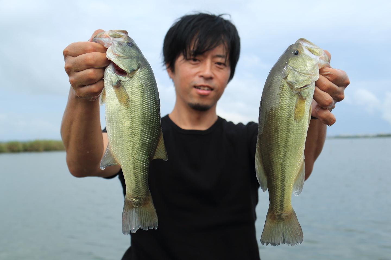 2016-05_sotonasakaura-32